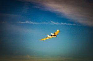 Drone, Fliying Wing